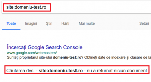 Rezultat verificare indexare site neindexat