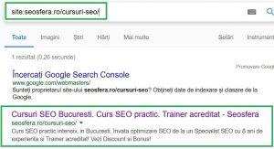 Rezultat Google la verificare indexare pagina site